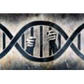 Monte Miller (Director, Forensic DNA Experts LLC)