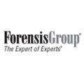 ForensisGroup, Inc. (The Expert of Experts)
