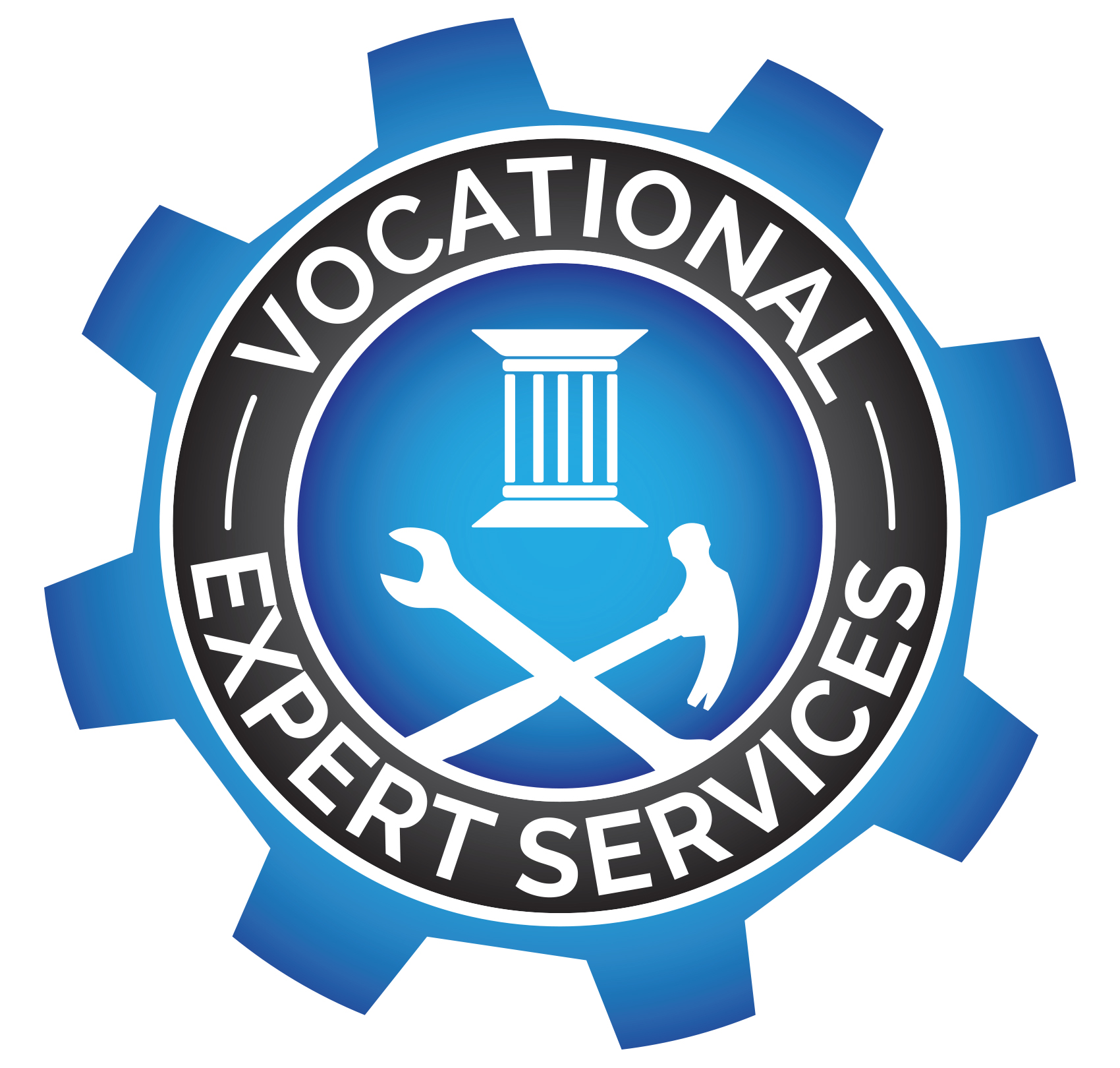 Vocational Expert Services